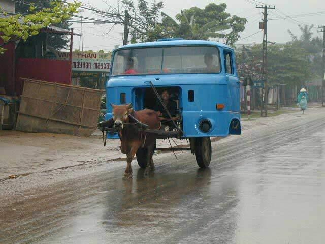 camion-tire-par-un-boeuf1213352668.1216465659